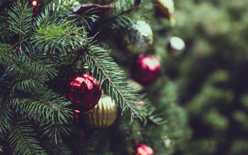 Real vs. Artificial Christmas Trees - An Environmental Perspective