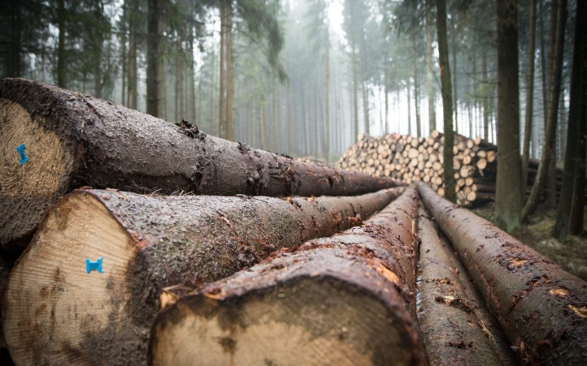 Utilization of Harvested Wood by the North American Forest Products Industry